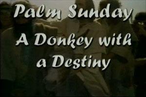 Donkey with a Destiny