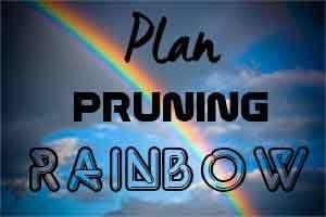 Plan Pruning Rainbow